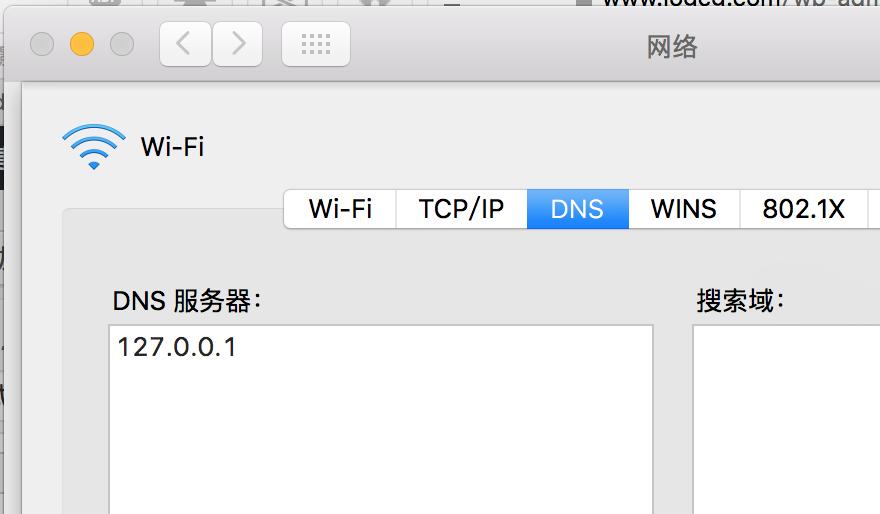 设置DNS
